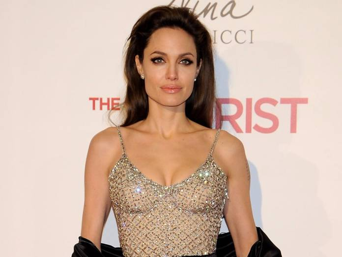 Angelina Jolie Net Worth and Income