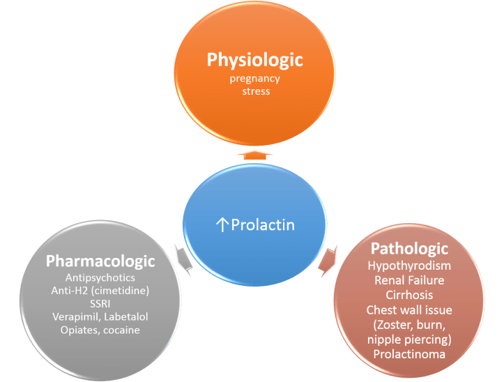 high-prolactin-causes