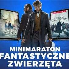 """Konkurs """"Polska Cyfrowa"""" zakończony: ogromne inwestycje początkiem cyfrowej rewolucji! Sukces lokalnej spółki WDM"""