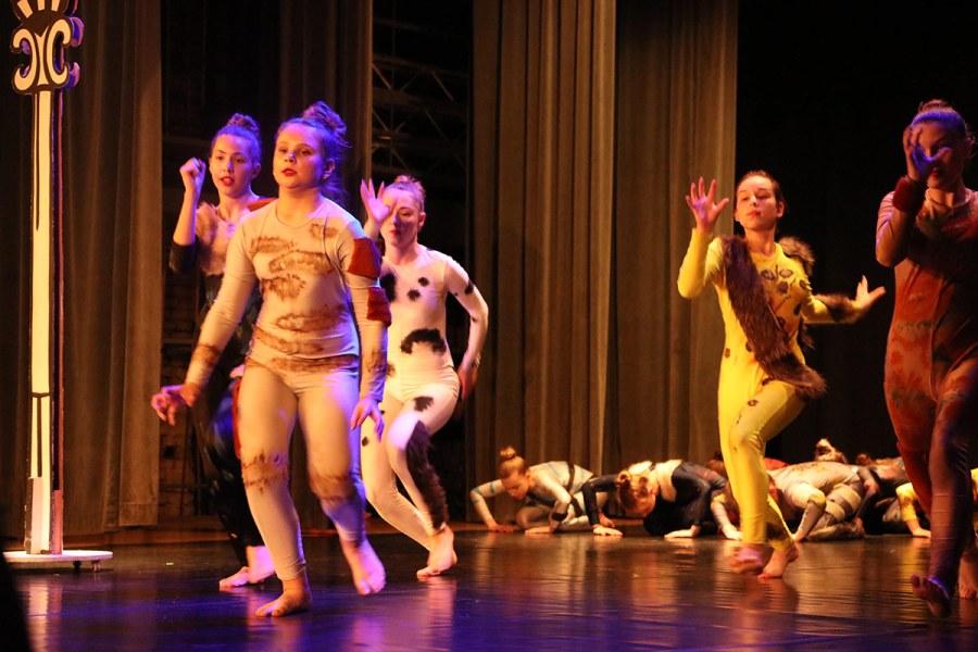 Kilka kroków – koncert taneczny [FOTO]
