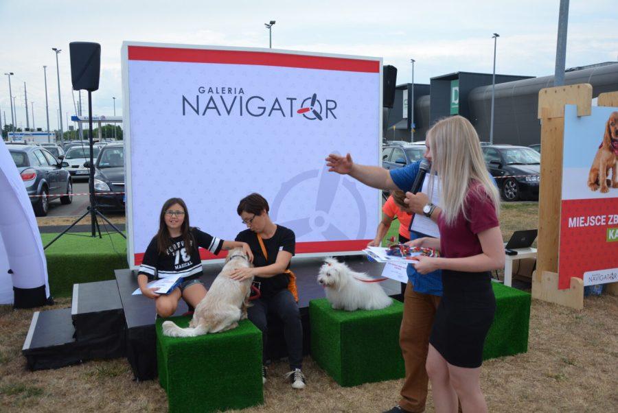 Zaadoptuj przyjaciela w Galerii Navigator [FOTO, VIDEO]