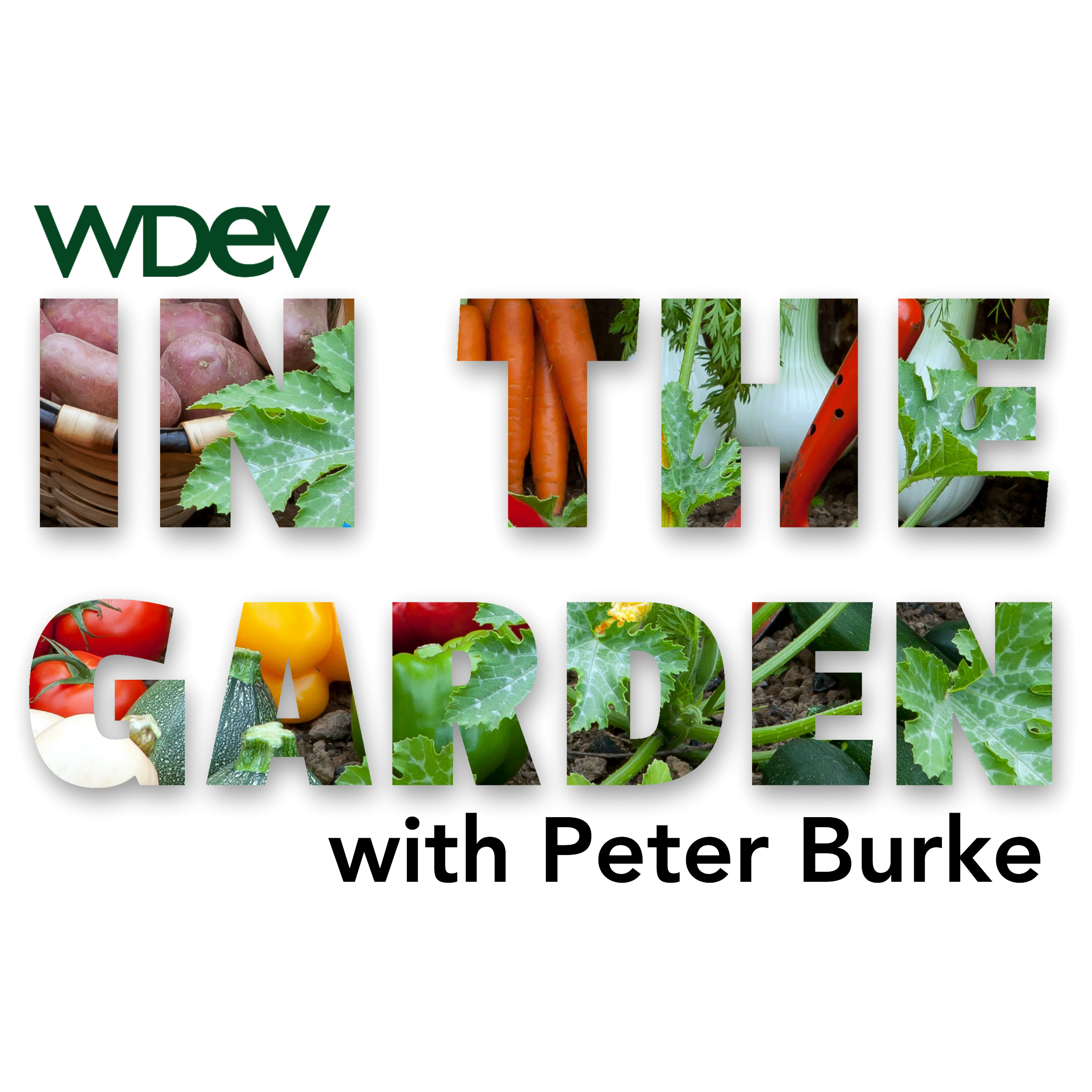 In the Garden Vermont Radio Talk