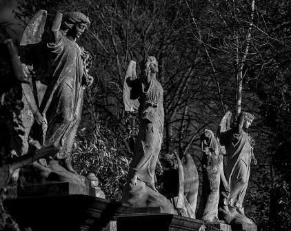 01_Ian Waterman_Fallen Angels