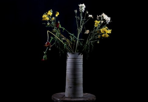 01_Philip Atkinson_Wilting Flowers