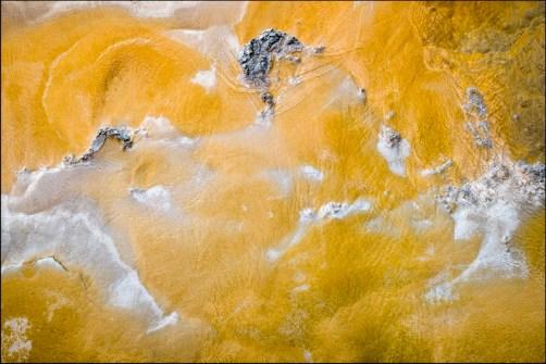02_John Cross_Synechococcus-Biofilm Yellowstone NP