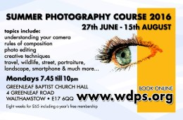 summer photography course