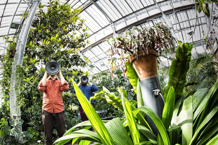 greenhouse__uupitirronen_2