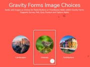 Gravity Forms Image Choices 1.3.34