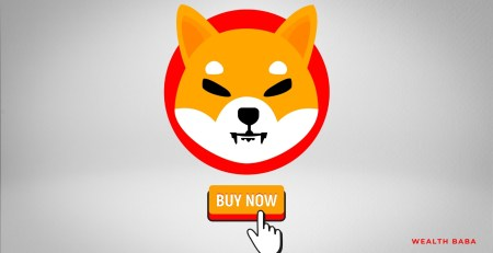 What is Shiba INU Cryptocurrency & How to buy Shiba INU in India - SHIBA INU India - Wealth Baba - Financial Planner & Investment Advisor in India