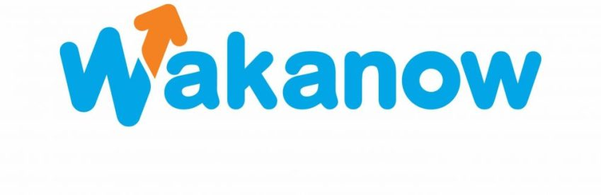 Wakanow Affiliate Program – Opportunity to Earn Money