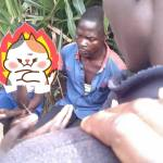 Man  Apprehended While Having Sex With a Primary School Pupil  In a Bush