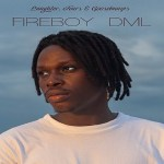 Fireboy DML – Need You