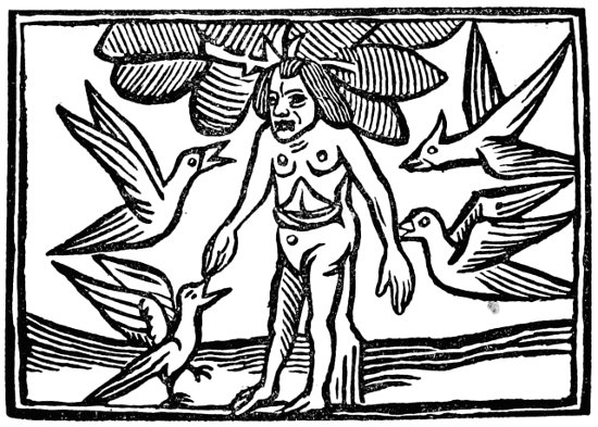 The Tree of Death. From Maundevile's Travels.