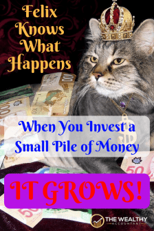 Want to be a rich fat cat? Then follow these simple rules to build a massive liquid net worth for early retirement. #personalfinance #FIRE #earlyretirement #wealth #fatcat