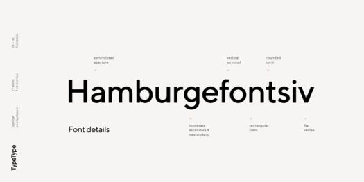 TT Norms, Typeface details