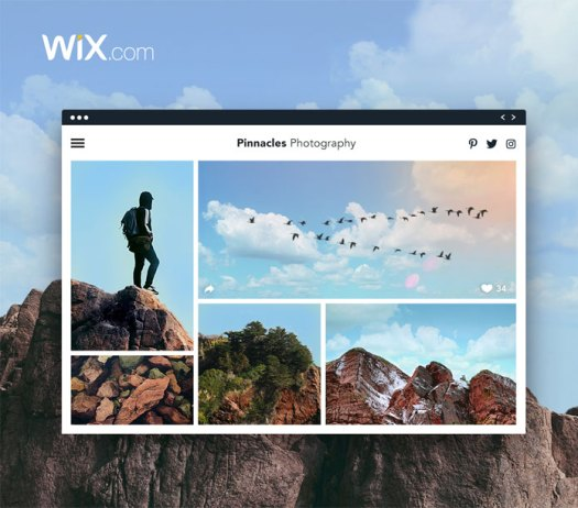 Wix gives photographs and other creatives the freedom to create anything they want.