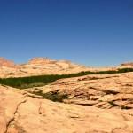Зелень и розовые скалы