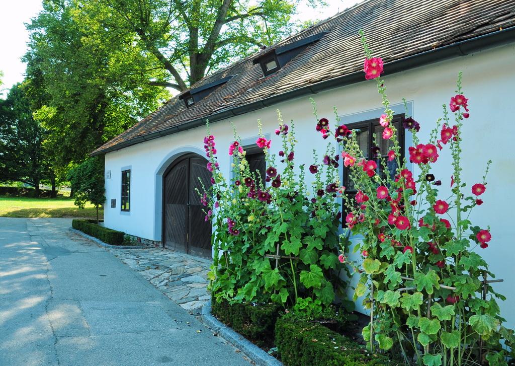 В замковом парке Крумлова