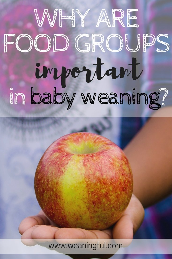 food groups in baby (led) weaning