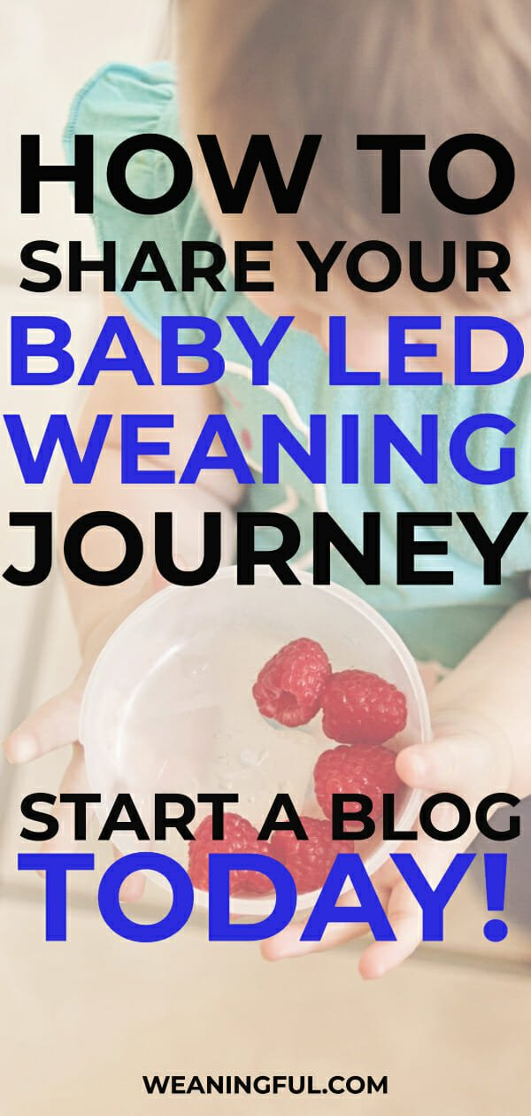 Baby led weaning aka blw is a wonderful experience meant to be shared. Starting solids with your little one can be easily shared with other baby led weaning beginners if you start a blog today.