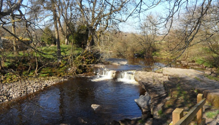 Waterfall at a ford, Newhouse Pastures, River Wear