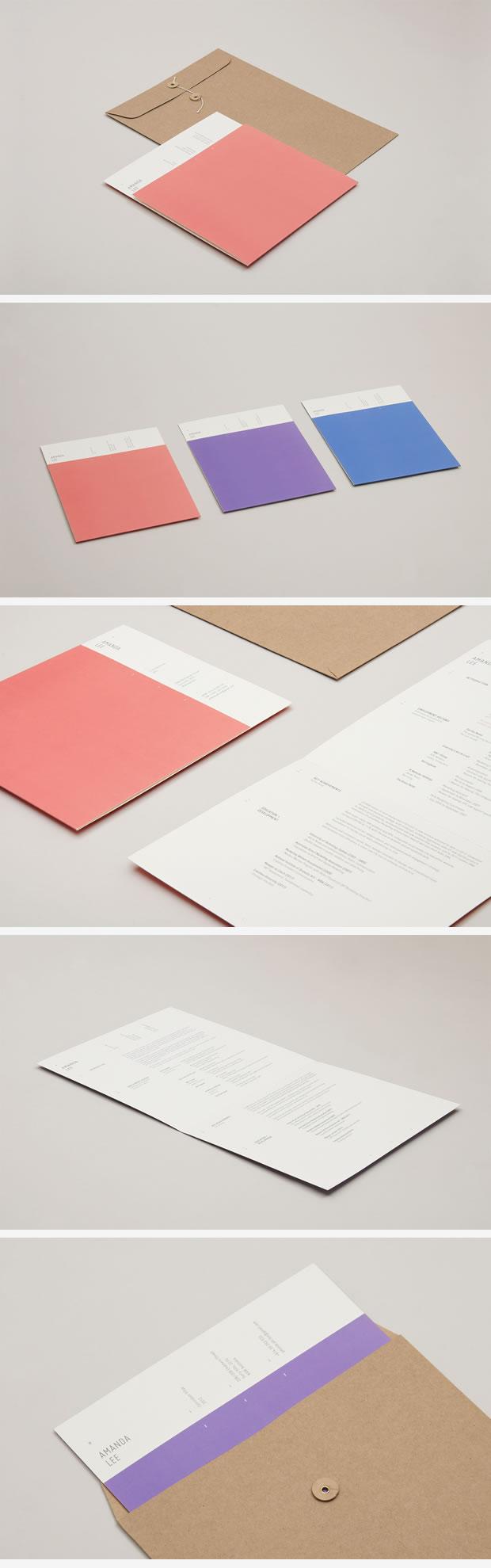 Sleek CV Design Folder