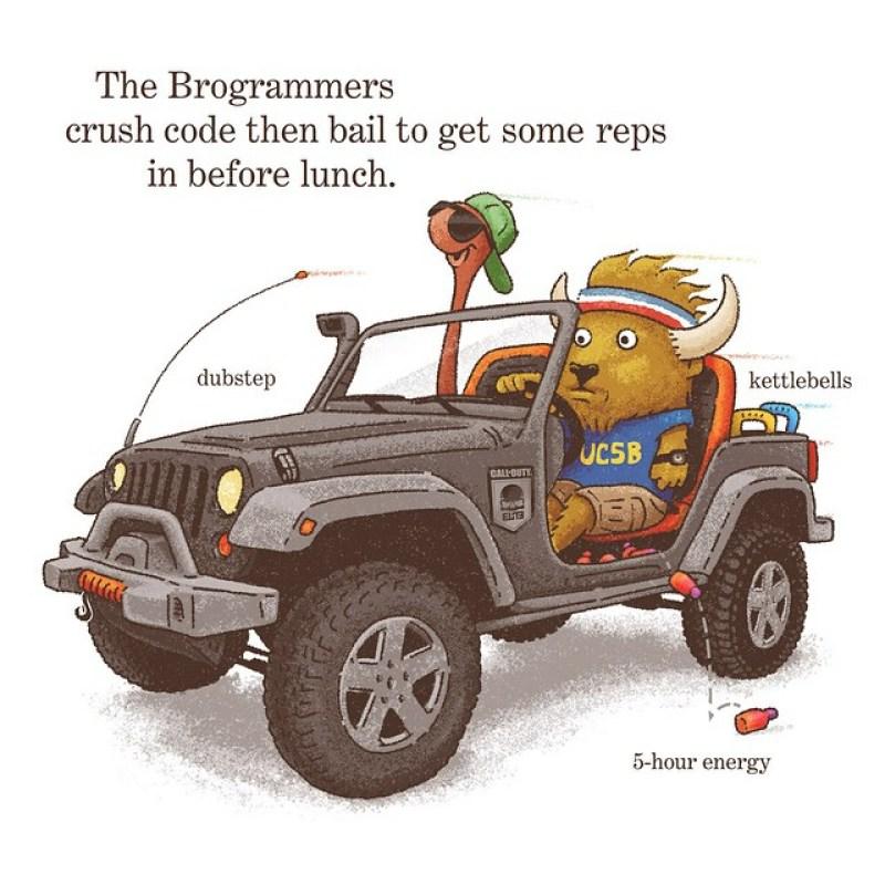 Brogrammer Jobs