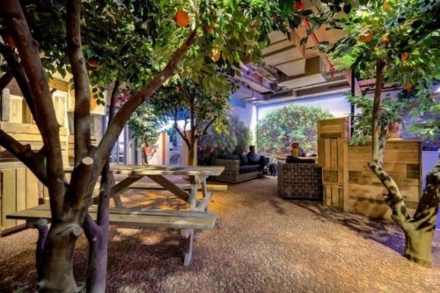 Google Tel Aviv Office Orangerie