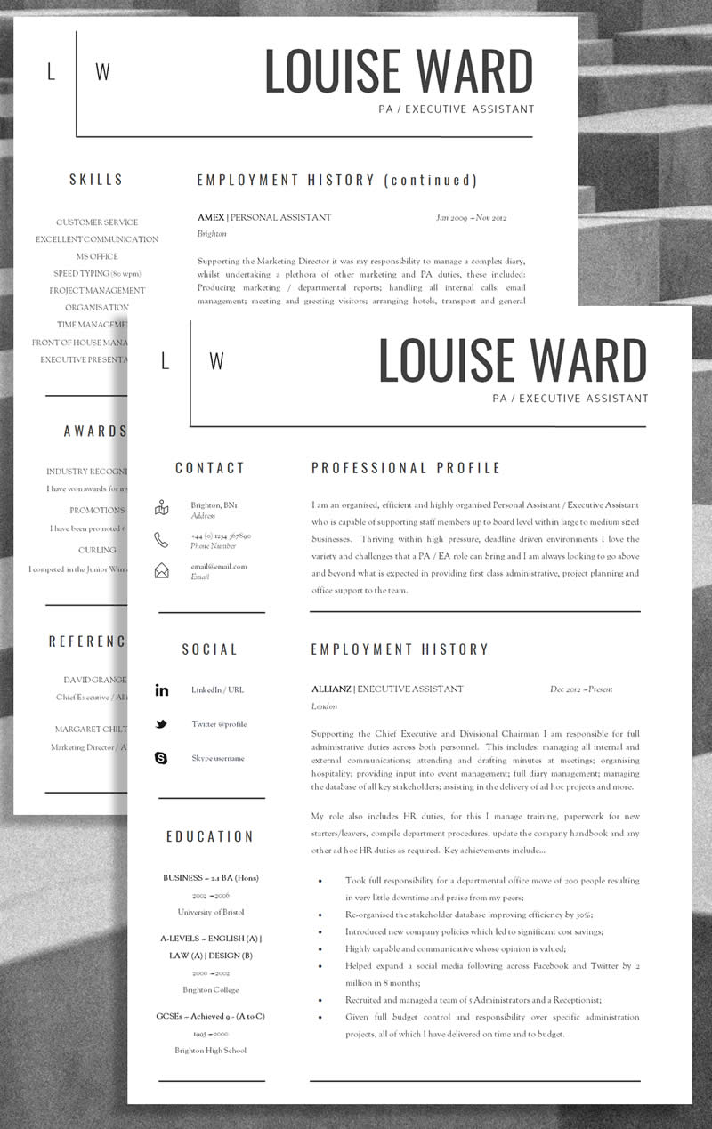 Professional CV Example