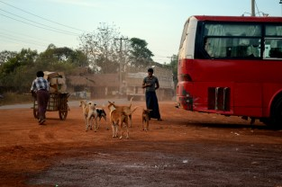 Large tour busses are beginning to arrive in Bagan, bringing with them thousands of tourists every year.