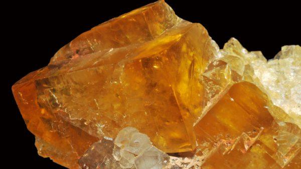 Fluoride1-777x437