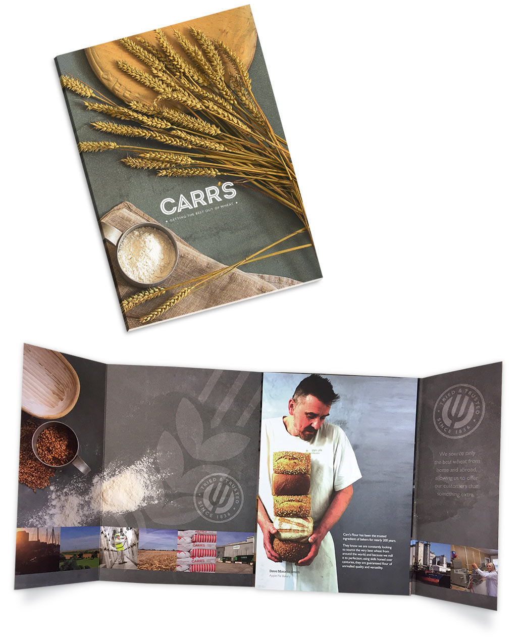 Eclectic Creative produced a design brochure for Carrs