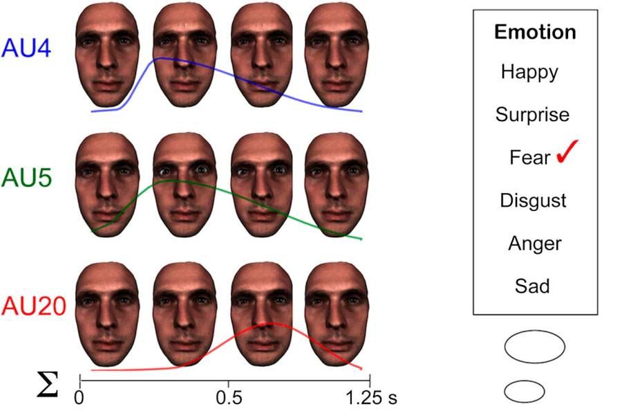 Estudio de las emociones por la Universidad de Galswog