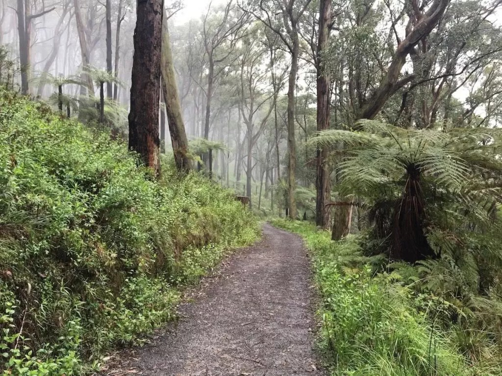 Cumberland1 john feeney hiking society melbourne's outer-east