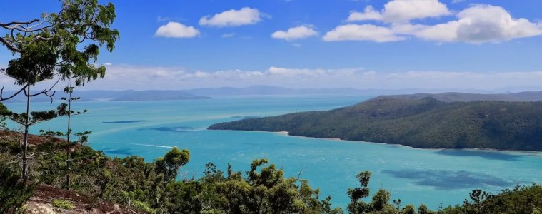 Camping The Whitsundays // Cairn Beach Campground (QLD), Solaye Snider, ferns, view, lookout, headland, turquoise water