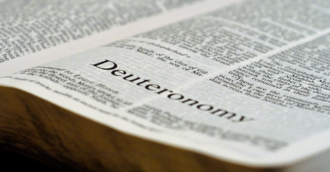 perversions in deuteronomy. errors in deuteronomy