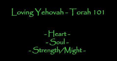 Torah 101