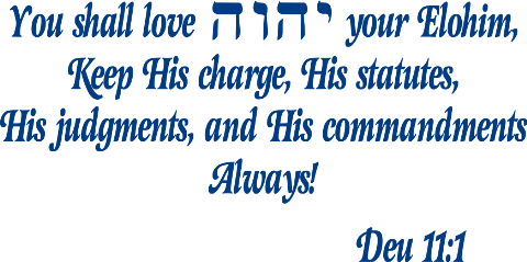 your elohim