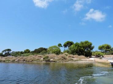 l'isola di Mozia vista dal vaporetto