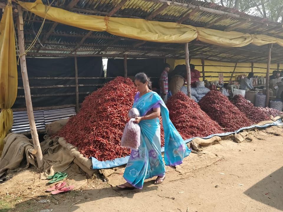 tonnellate di peperoncini nel Coorg in india