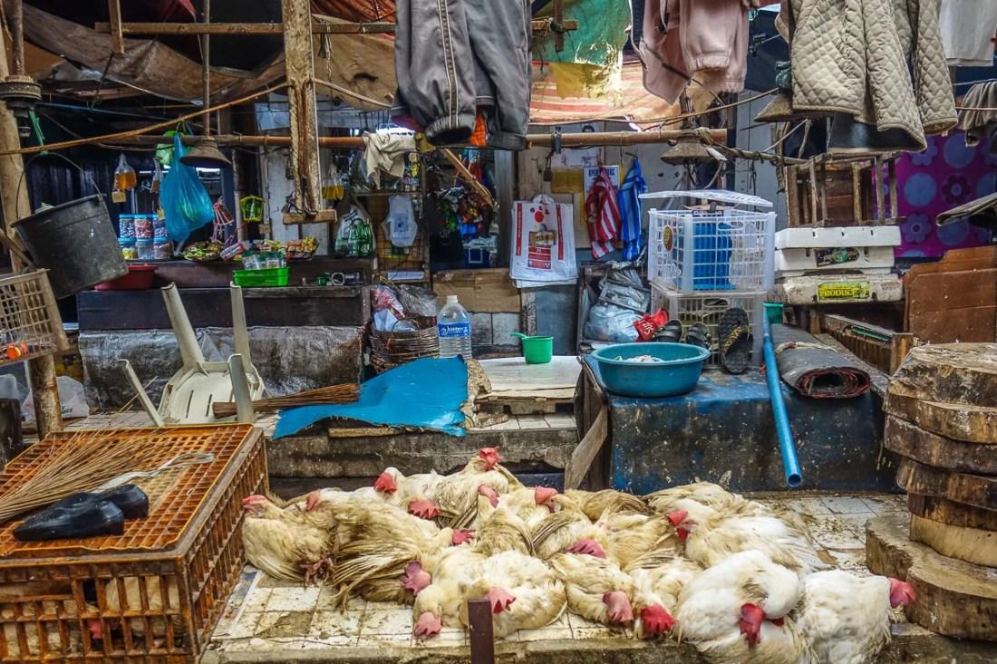 lapaz market a ilo ilo nelle filippine