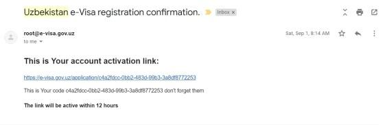la mail di attivazione contiene il link o e il codice di attivazione per proseguire la procedura di visto Uzbekistan elettronico