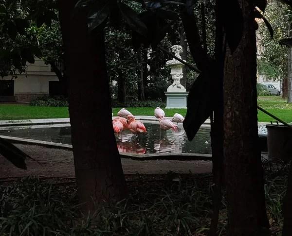 Villa Invernizzi e i suoi fenicotteri in zona Palestro a Milano