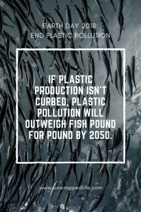 Plastic Pollution Quote.jpg