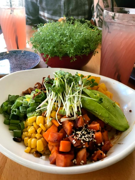 Native Foods Buddah Bowl.jpg