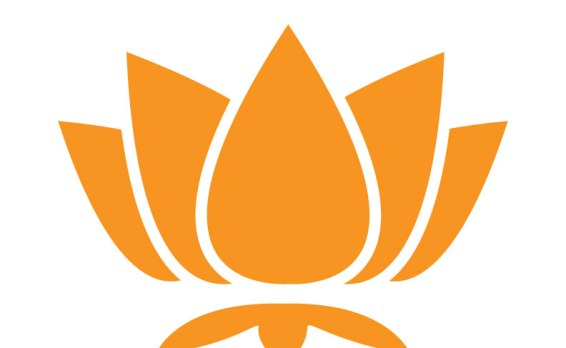 lotus-whole-orange