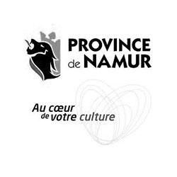 province namur maison culture