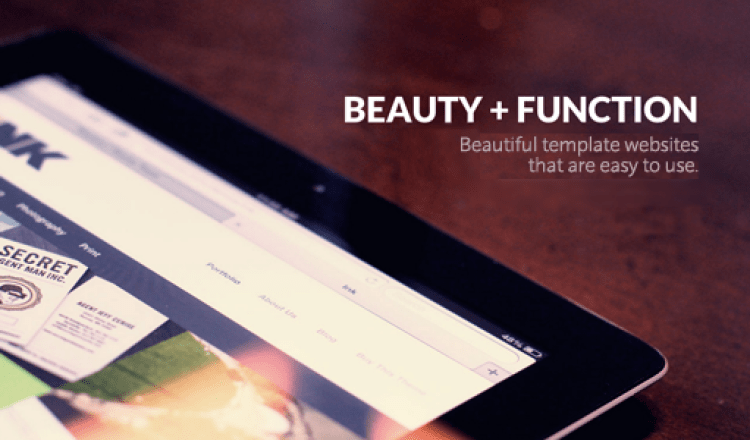 beauty and function of websites