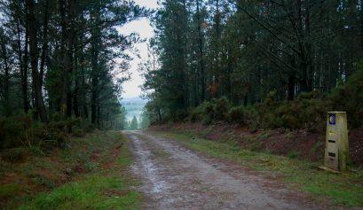 Ochtendmist in het dal op de camino primitivo