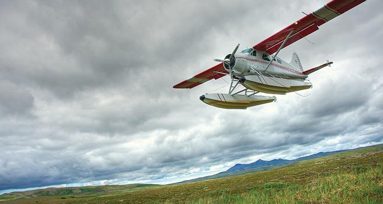 Bush Plane